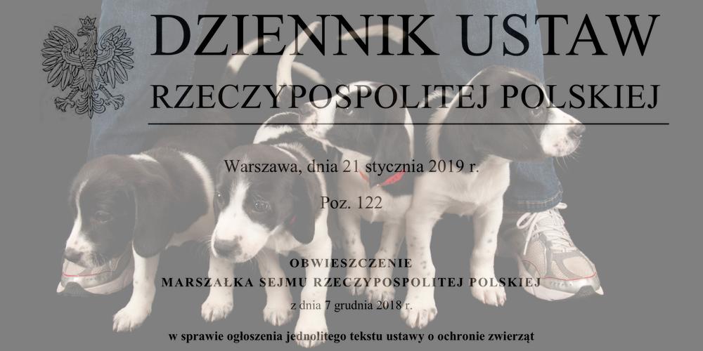 Definicja psa rasowego w prawie polskim