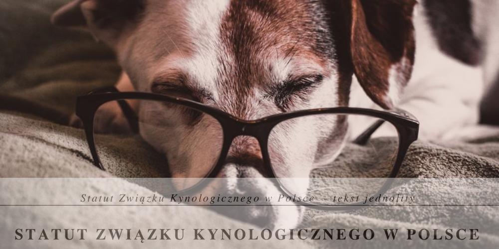 ZKwP. Opinia prawna w związku ze stanowiskiem organu nadzoru, Prezydenta m.st. Warszawy