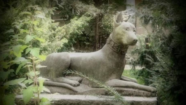 Najstarszy pomnik psa w Polsce